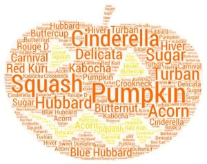 pumpkinwordcloud